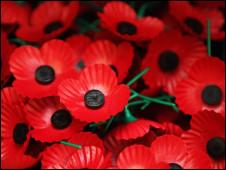 英国罂粟花标志