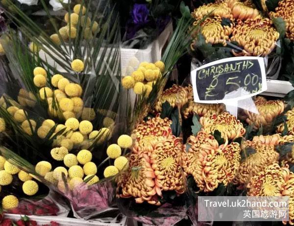 鲜花的价格