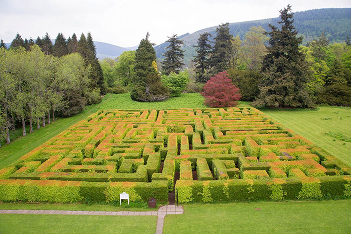 Traquair Maze, Innerleithen, Scotland