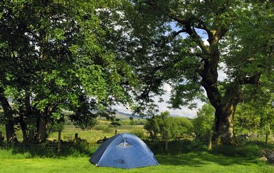 威尔士露营