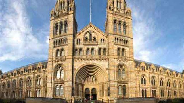 london-natural-history-museum.jpg