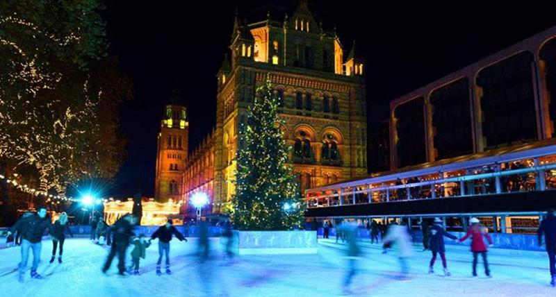 伦敦自然历史博物馆的滑冰场